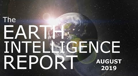 The Year 2024, Earth Intelligence Report, August 2019
